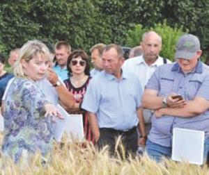 Повышение культуры и устойчивости современного земледелия – залог успешного ведения сельхозпроизводства