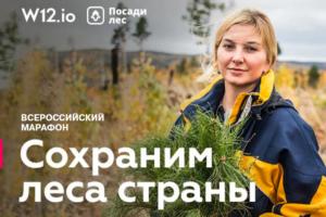 Проект по восстановлению и сохранению лесов «ПосадиЛес» и краудфандинговая платформа W12. io