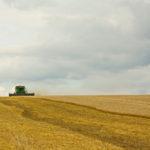 Уборка зерновых и зернобобовых культур в Рязанской области вышла на финишную прямую