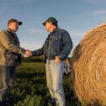 Рязанская область участвует в проекте «Создание системы поддержки фермеров и развитие сельской кооперации»