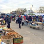 В ярмарках выходного дня в Рязани приняли участие 243 местных производителя